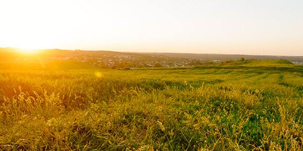 ЮК АРМАДА - Спадкування майнових прав на невитребувані земельні паї - теорія і практика