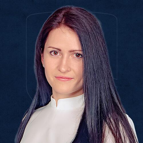 Армада-Команда-практики-Анастасія-Луук