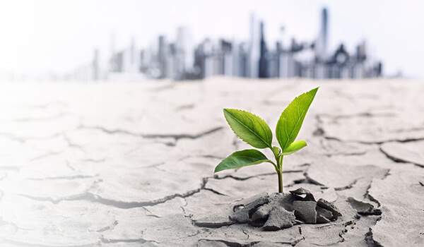 Відповідальність-за-забруднення-екології,-чого-слід-боятися-підприємствам