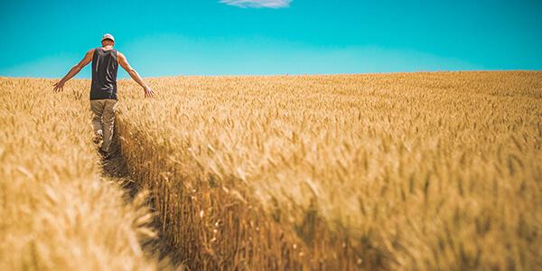 Право-постійного-користування-Як-не-втратити-землю-після-відкриття-ринку-землі
