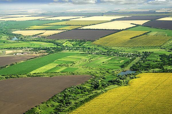Реалізація-переважного-права-на-купівлю-земельних-ділянок-сільськогосподарського-призначення